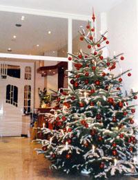 weihnachten silvester timmendorfer strand 4 sterne park. Black Bedroom Furniture Sets. Home Design Ideas